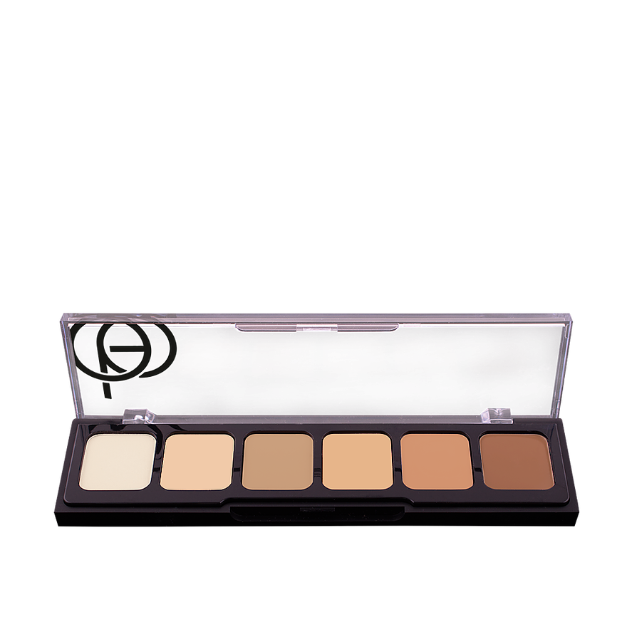 correct and conceal pallete